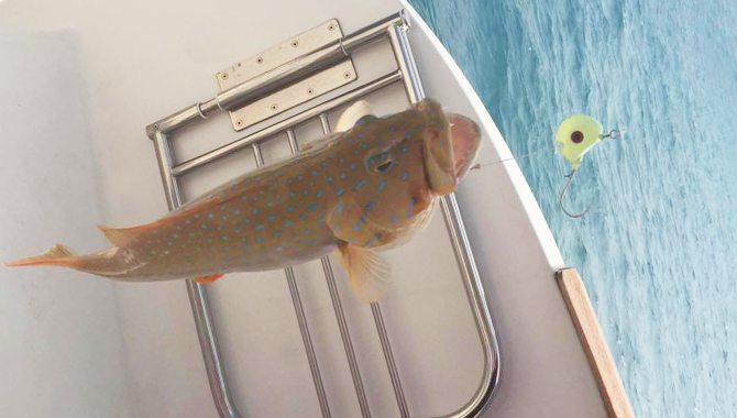 fishing-trip-3